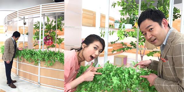 【ファン限定】わくまゆファン Part41【アンチ厳禁】 YouTube動画>1本 ->画像>3207枚