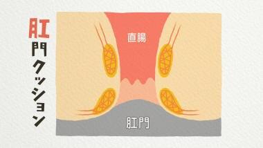 いぼ 痔 の 原因 いぼ痔になる原因-いぼ痔の原因と治療方法