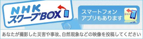 スクープBOX