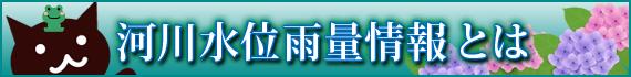 京都府河川水位雨量情報とは?