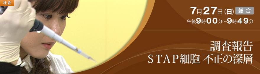 調査報告 STAP細胞 不正の深層