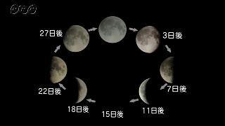 月の形と動き