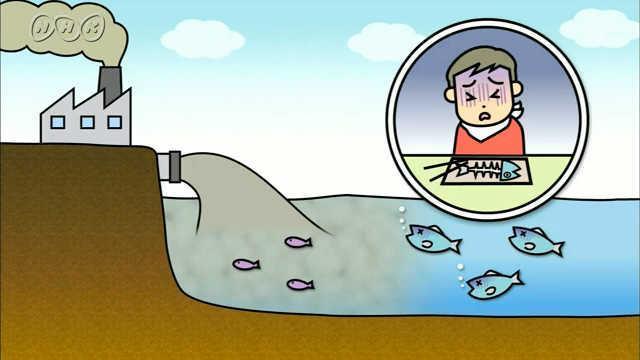 公害と環境問題