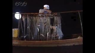 四万十川のいろいろなアユ漁