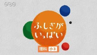 Nhk for school 理科 10min.ボックス 理科1分野 [理科 中・高]|NHK