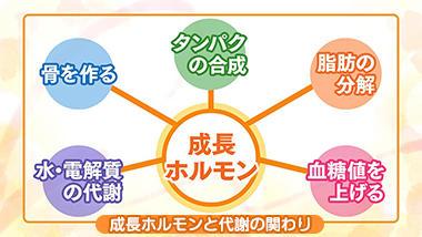 小児・成人の成長ホルモンの病気 巨人症・低身長症など | NHK健康チャンネル