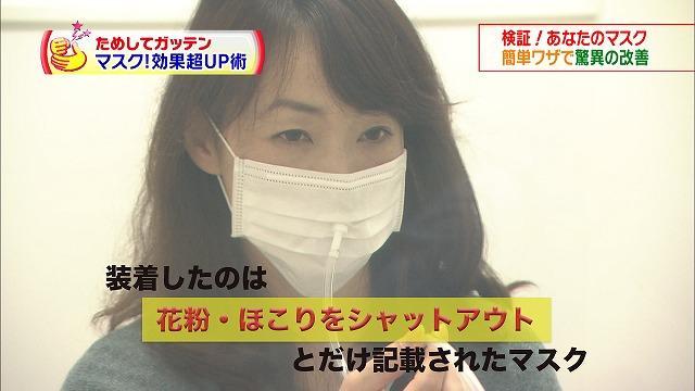 布 マスク 効果 ない