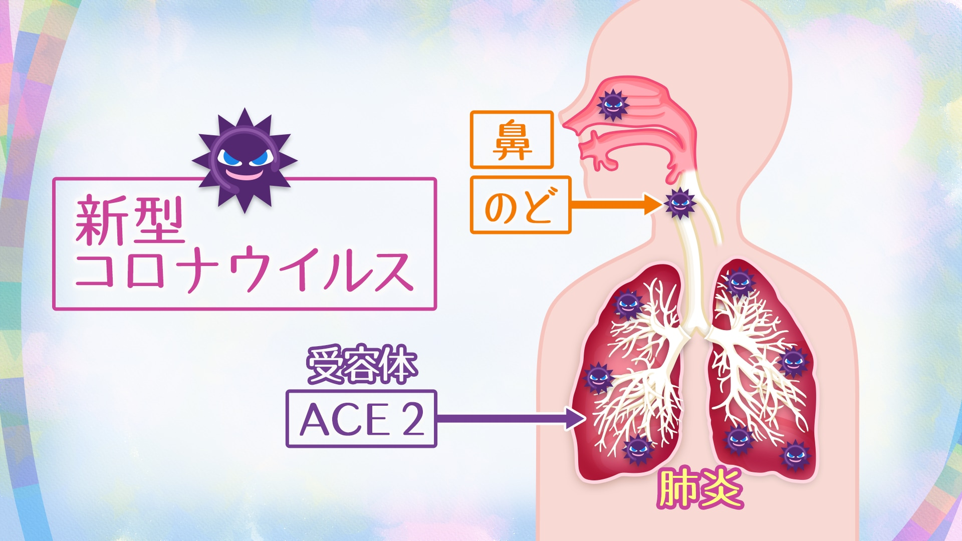 肺炎 細菌 うつる 性