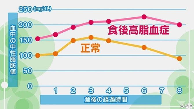 食後に中性脂肪値が急増する「食後高脂血症」の危険性と検査 | NHK健康 ...