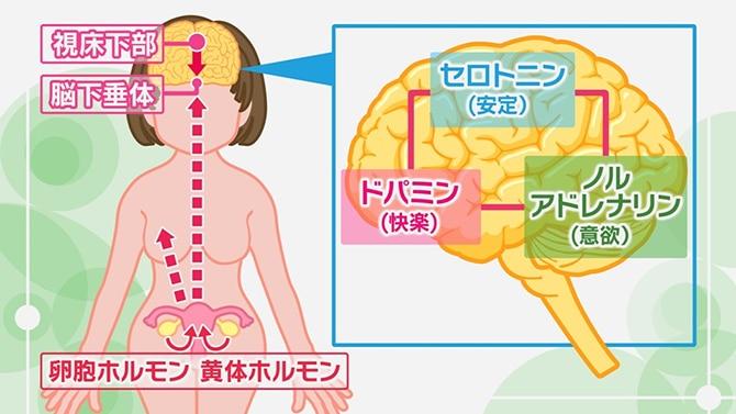 前 症状 生理