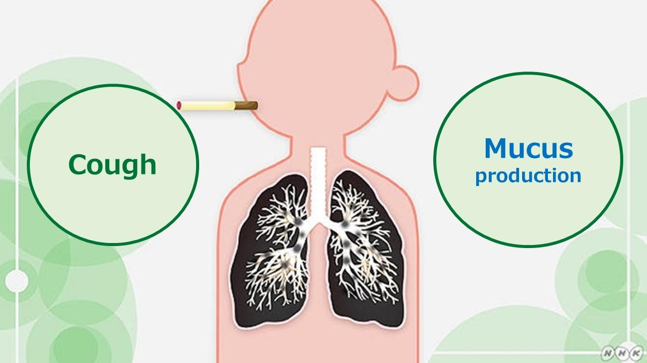 COPD which causes shortness of breath, cough, mucus production and wheezing. Its symptoms, diagnosis and treatment.