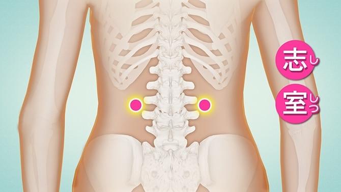 痛い が 横 なると 腰 に 腰の横が痛いのは、筋肉の異常反応ですよ!?