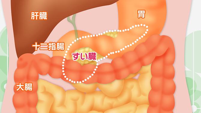 すい臓 が ん の 症状