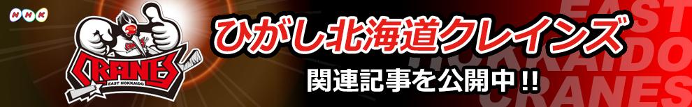 ひがし北海道クレインズ 関連記事公開中!